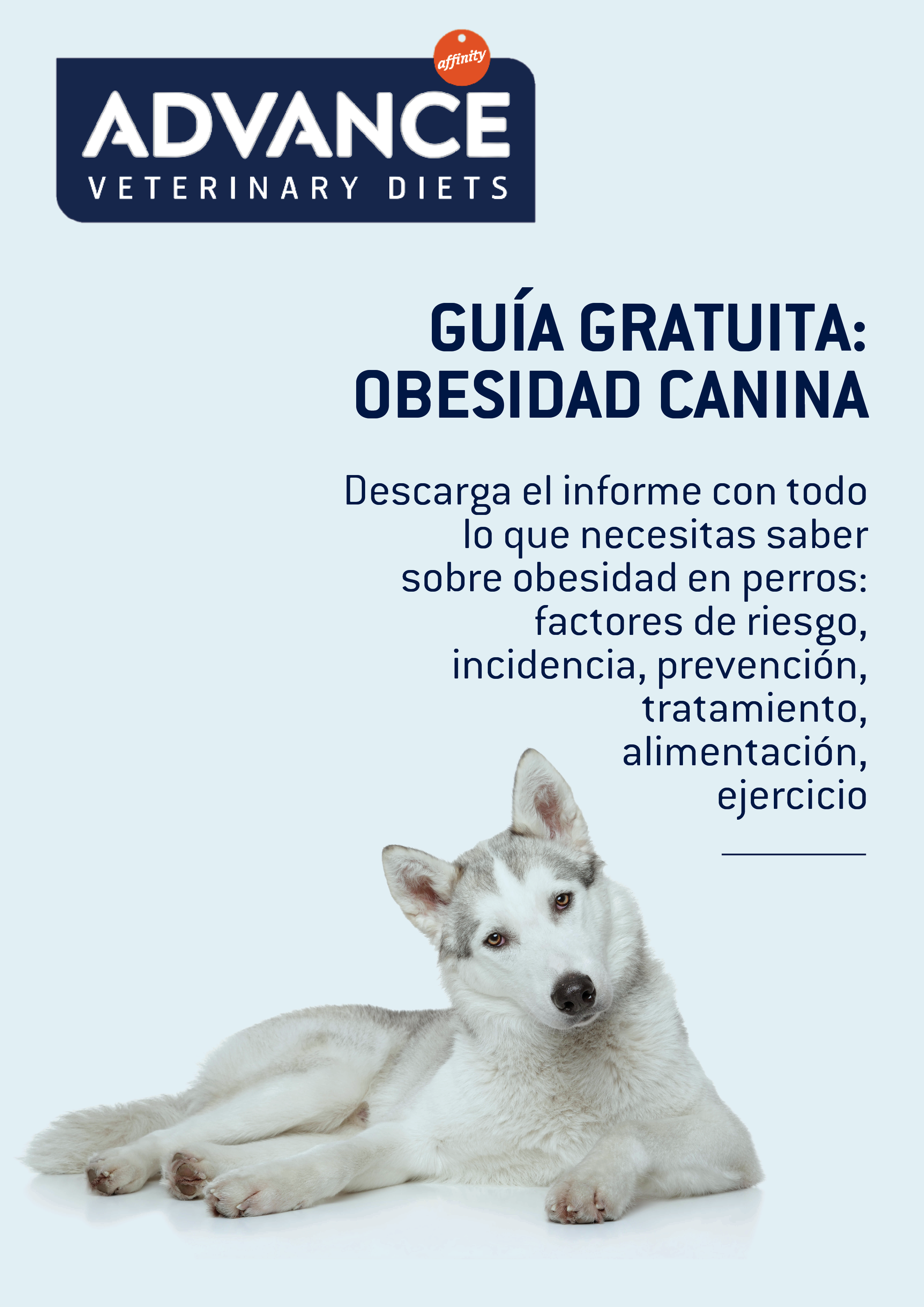 Affinity - RR Obesidad canina