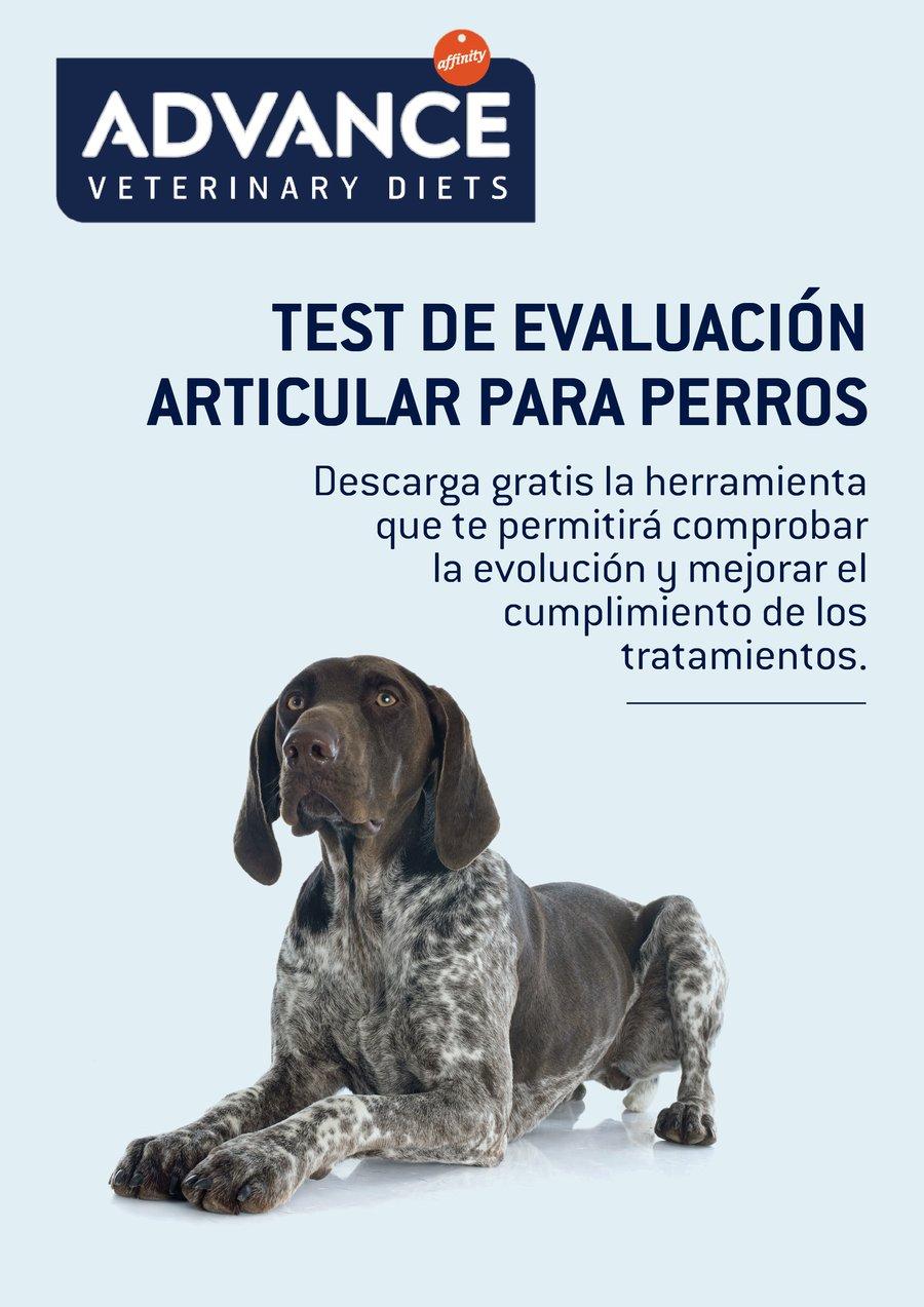 Test_evaluacion_grande