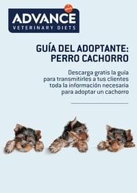 portada_guia_adoptante