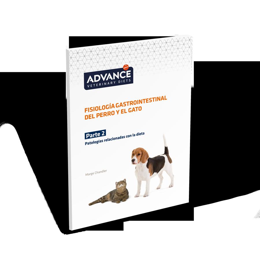 Guía Gastrointestinal parte 2 - Vets & Clinics.png
